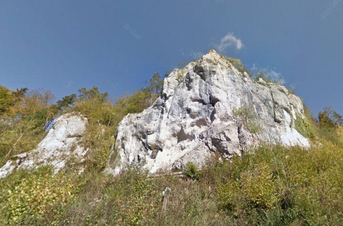Hirondelle de rochers  - Thomas Lux