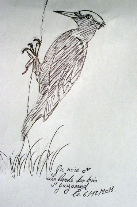 Pic noir  - Philippe Boisteault