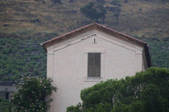 Hirondelle de fenêtre